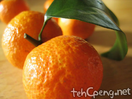 Orange shoot 1