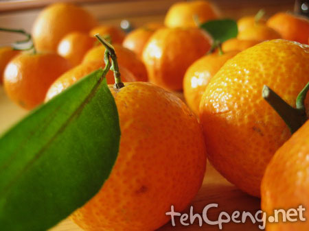 Orange shoot 3