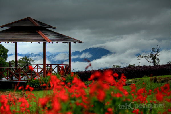 Garden In The Sky - Borneo Highlands Resort