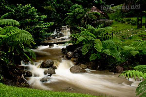 Long exposure shot of a waterfall - Borneo Highlands Resort