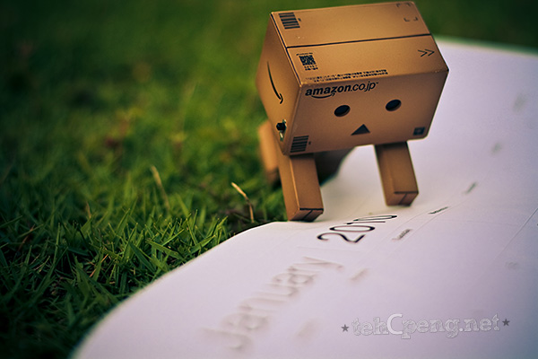 Danbo welcomes 2010